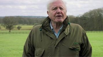 climate change: sir david attenborough warns of 'catastrophe'