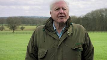 sir david attenborough presents climate change: the facts