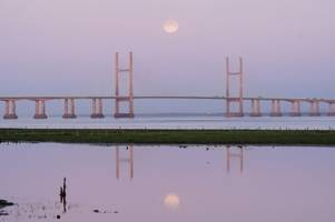 Pink moon to appear in skies tonight - here's what you need to know