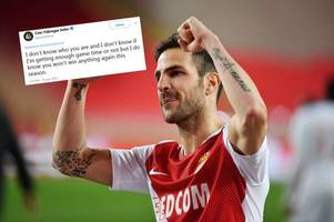 cesc fabregas takes dig at tottenham on social media - and arsenal & chelsea fans will love it