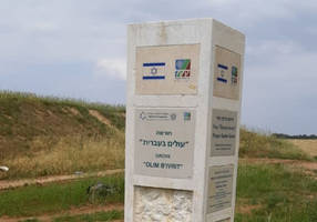 forest burnt by terror blossoms thanks to olim who learn hebrew