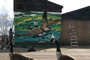 Stunning new mural unveiled for Tamworth beauty spot