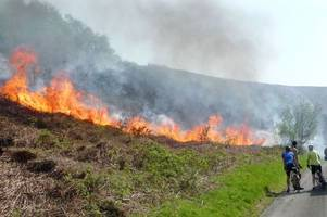 shocking pictures show grass fire ripping through open land near ammanford