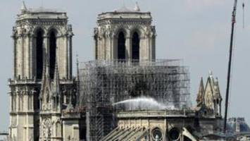 bees living on notre-dame cathedral roof survive blaze