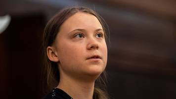 Greta Thunberg: Teen tells UK politicians 'listen to climate scientists'