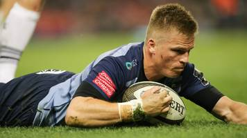 gareth anscombe: wales fly-half focused on cardiff blues success