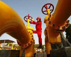chinese companies take stakes in russia's novatek gas