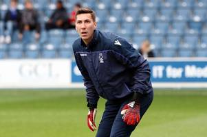 nottingham forest player ratings: costel pantilimon the hero against qpr