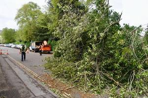 everything we know so far about storm hannah damage and disruption