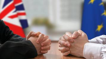 brexit: uk to ask eu for citizens' rights assurance