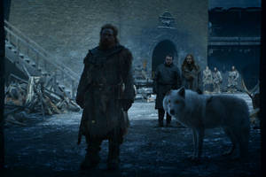 'game of thrones': here's why ghost didn't get a more loving goodbye from jon snow