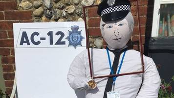 line of duty ted hastings scarecrow nabbed from village