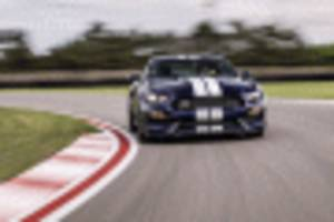 First drive review: 2019 Ford Mustang Shelby GT350 gets a grip on its mission