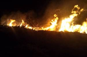 firefighters tackle large gorse fire near holywell bay