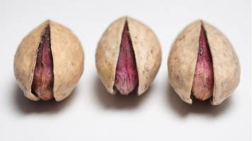 the pistachios that need police protection