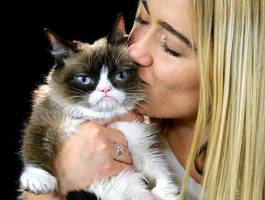 Grumpy Cat has died at the age of 7. Here's how her owner created a viral sensation out of her miserable-looking pet and made millions in the process.
