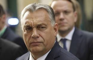 orban says he discussed missiles and natural gas with trump