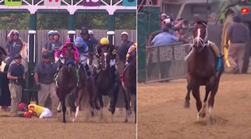 bodexpress ran the preakness stakes without his jockey and twitter loved his independent spirit