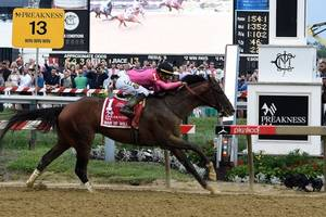 War of Will wins wide-open Preakness Stakes