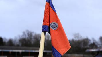 Danny Searle: Aldershot Town appoint former Braintree boss as manager