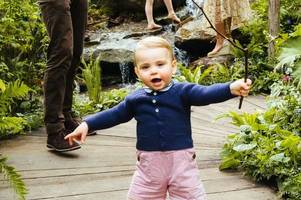 royals break chelsea flower show rule by taking underage prince louis and charlotte to view mum's garden