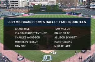 michigan sports hall of fame class of 2019 (video)