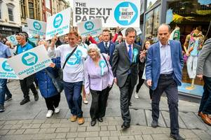 Here's what Brexit Party candidate Ann Widdecombe had to say about Nigel Farage, gay marriage and being 'milkshaked'