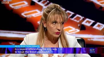 martina anderson: i'm the only voice for unionist remainers