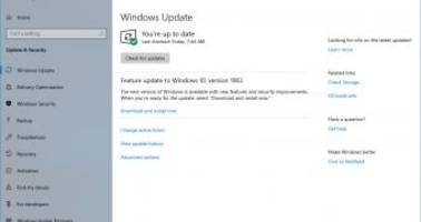 How to Download Windows 10 May 2019 Update from Windows Update