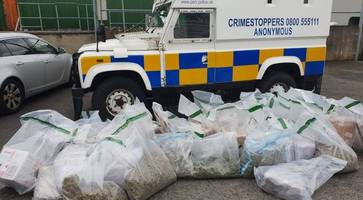 Three arrested after police discover £640k of cannabis in Armagh