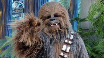 Service Dog Meets Chewbacca at Disney World, Has Best Reaction