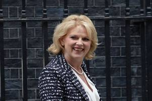 anna soubry mp named as new leader of change uk after departure of number of members