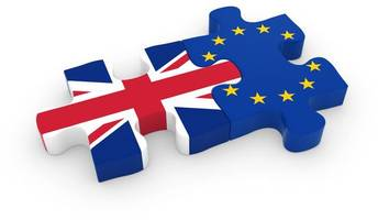 what do castle douglas high school pupils think is the next step after european elections