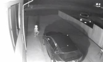 Woman's Security Camera Catches Alien Strutting in Her Driveway