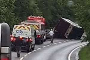 a39 crash: boy, 13, and woman in hospital as horses remain trapped