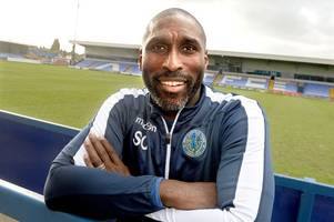 next hull city manager odds: sol campbell races into reckoning to be next city boss