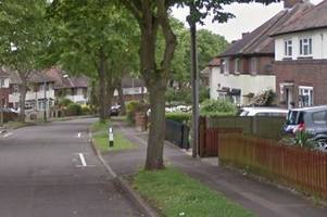 man arrested as armed police and dogs surround house