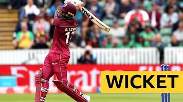 cricket world cup: evin lewis hits a six and then caught on 70