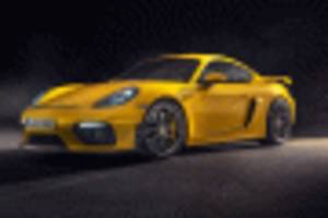 2020 porsche 718 spawns cayman gt4 and boxster spyder with 414-horsepower flat-6 engines