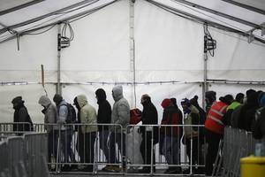 refugee crisis could be 'stroke of luck in german history,' says ex-president