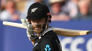 sublime williamson guides new zealand to victory over south africa