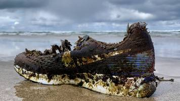 why are nike trainers washing up on beaches?