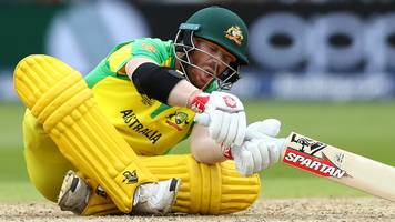Cricket World Cup: Australia's David Warner floored by ball to the groin