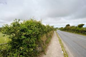 fury as cornwall's hedges are 'scalped' leaving wildlife threatened
