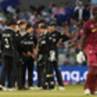 Cricket World Cup: Kane Williamson a 'genius' as odds cut on Kiwis winning