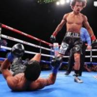 "undefeated diamond cbd fighter blair ""the flair"" cobbs sports company logo in latest victory"