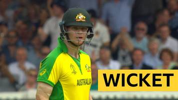 Cricket World Cup: Australia's Marcus Stoinis run out against England after a mix-up with Steve Smith