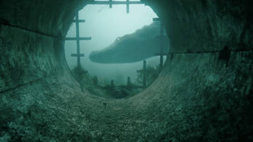 The director of Crawl answers our most serious Florida question