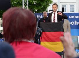'personality cult': new rift in germany's far-right afd ahead of polls
