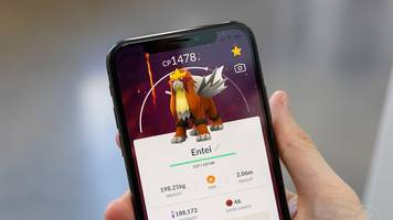 pokémon go entei raid guide: counters, best movesets, and more